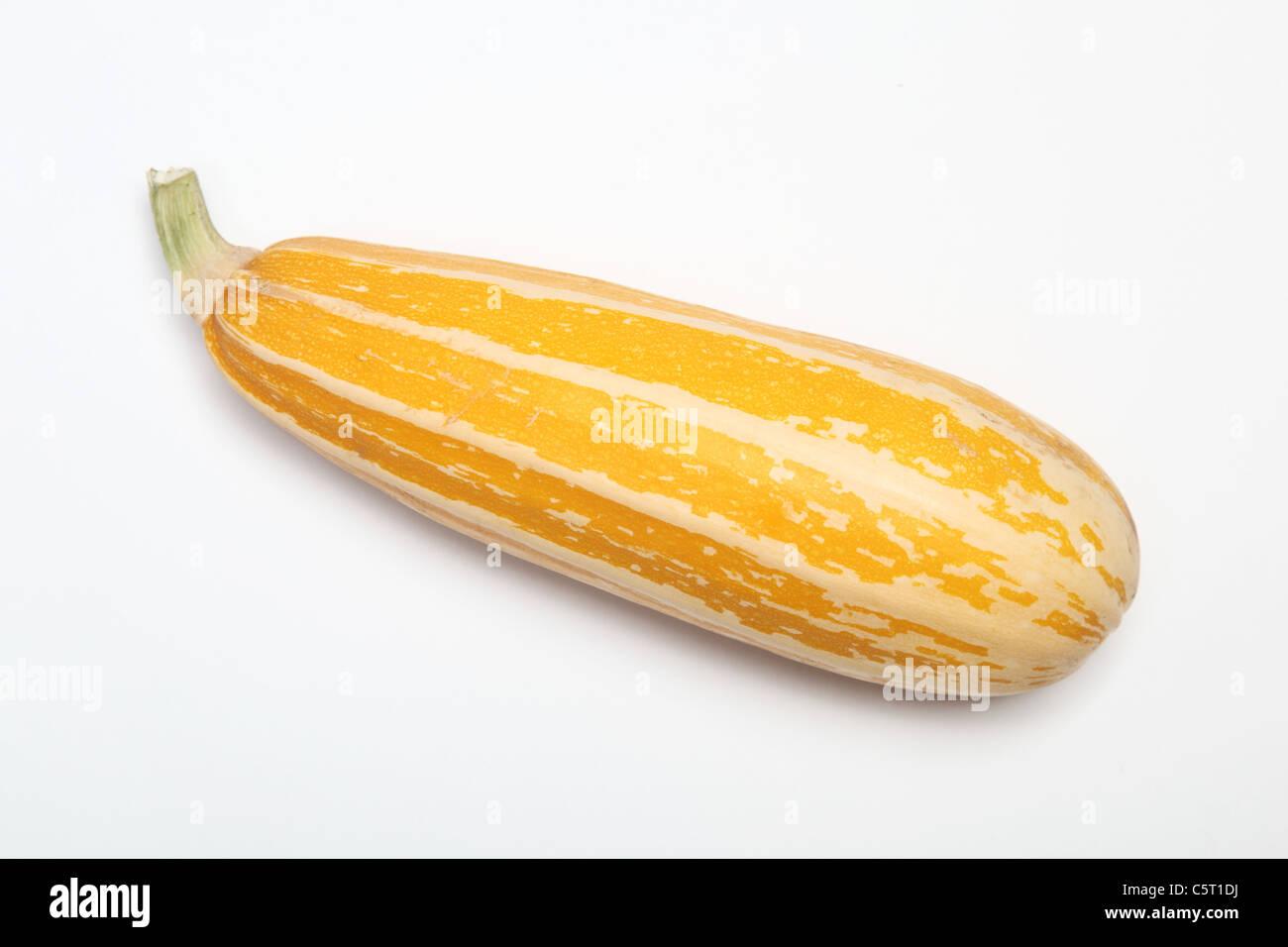A yellow Italian Marrow - Stock Image