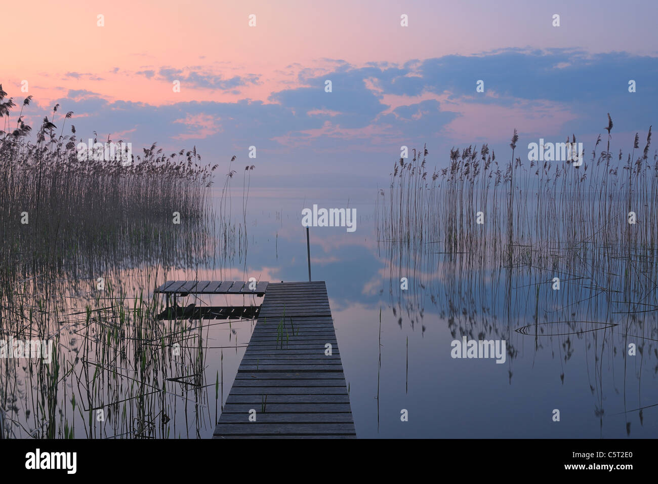 Germany, Mecklenburg-Vorpommern, Mecklenburger Seenplatte, Plau am See, View of jetty at sunrise with reeds at lake - Stock Image