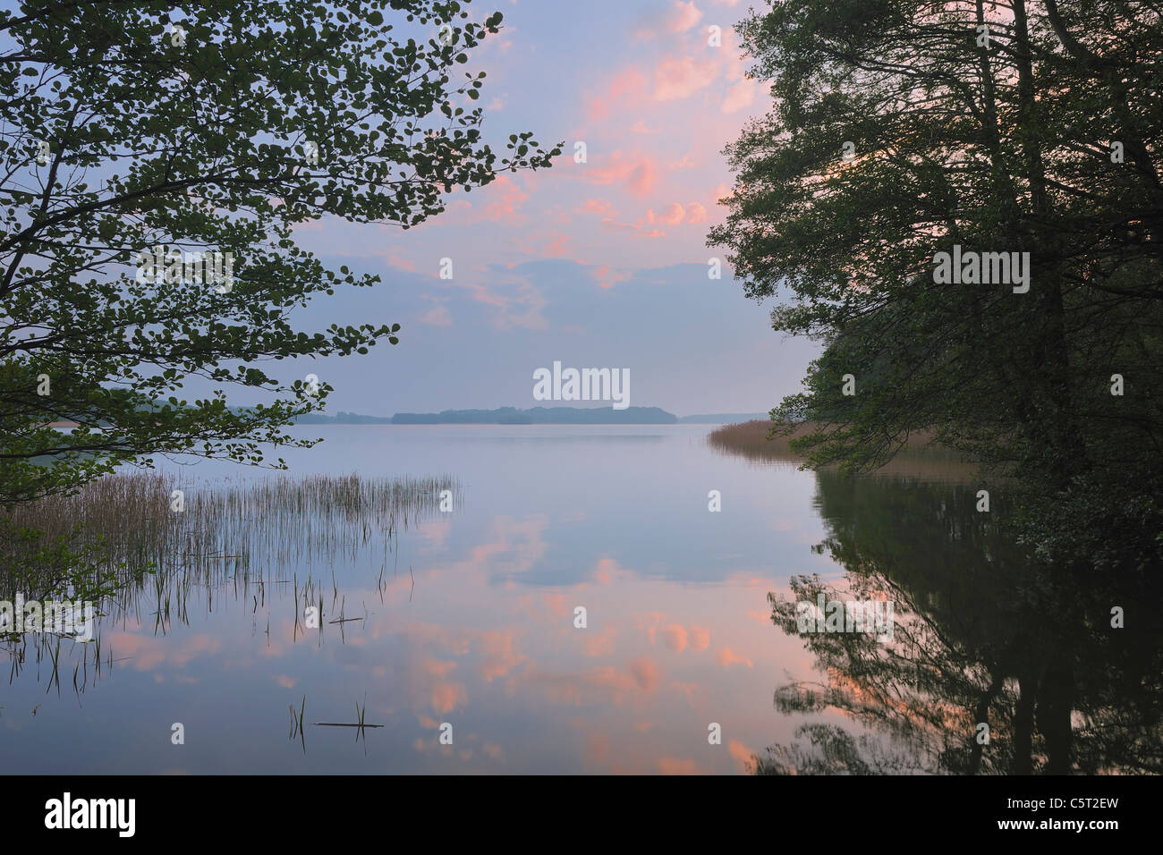 Germany, Mecklenburg-Vorpommern, Mecklenburger Seenplatte, Plau am See, View of suset with trees at lake - Stock Image