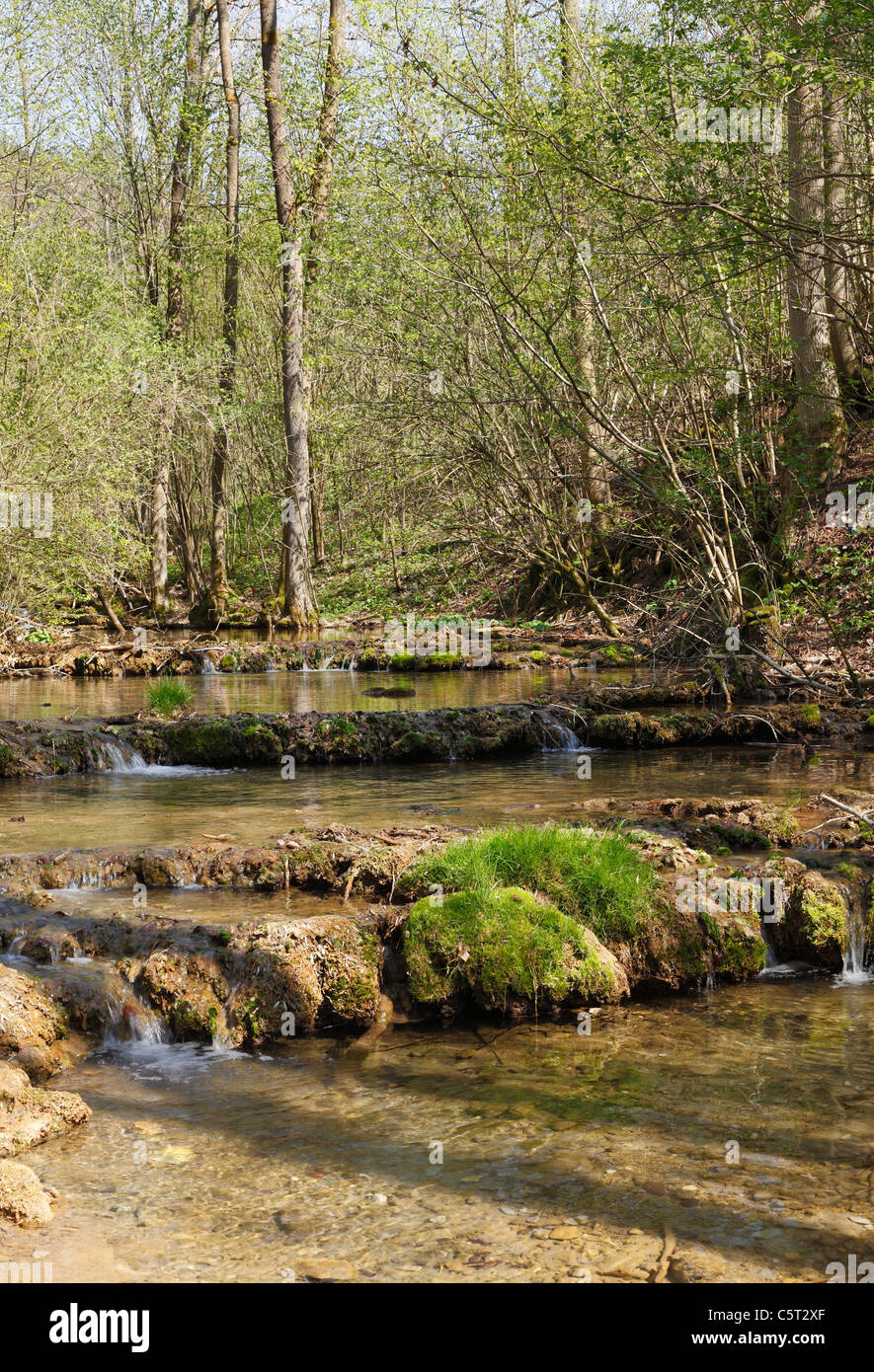 Germany, Bavaria, Franconia, Upper Franconia, Franconian Switzerland, Weissenohe, Lillach Valley, Stream at sinter - Stock Image