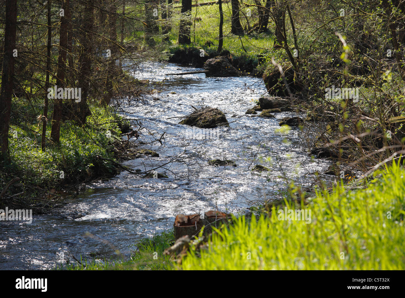 Germany, Bavaria, Franconia, Upper Franconia, Franconian Switzerland, Pottenstein, View of stream in Puettlach valley - Stock Image