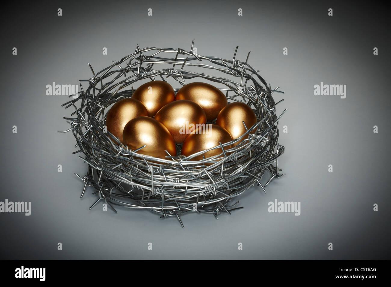 Nest Egg Concept Symbolizing Security - Stock Image