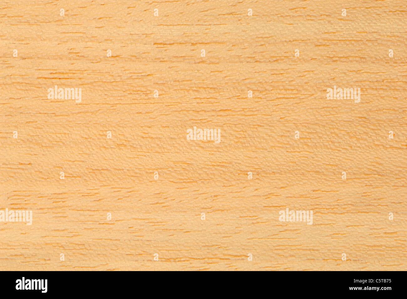 Wood surface, Koto Wood (Pterygota macrocarpa), full frame - Stock Image