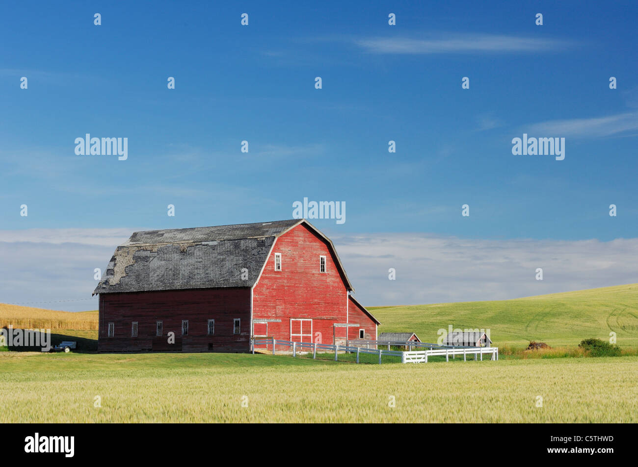 USA, Palouse, Whitman County, Washington State, Barn in field - Stock Image