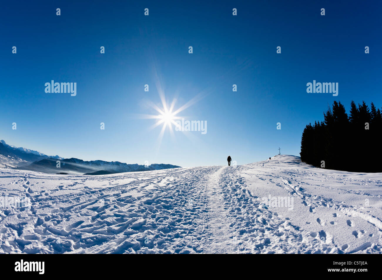 Germany, Bavaria, Blomberg, Woman hiking on top of Zwiesel mountain - Stock Image