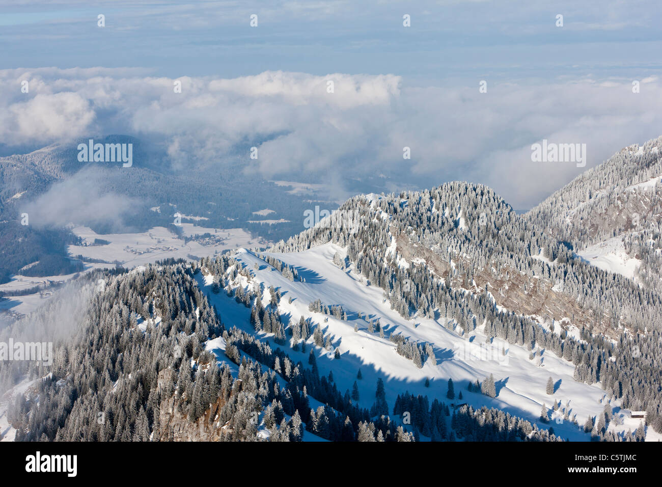 South Germany, Upper Bavaria, Bayrischzell, View of forest from Wendelstein mountain - Stock Image