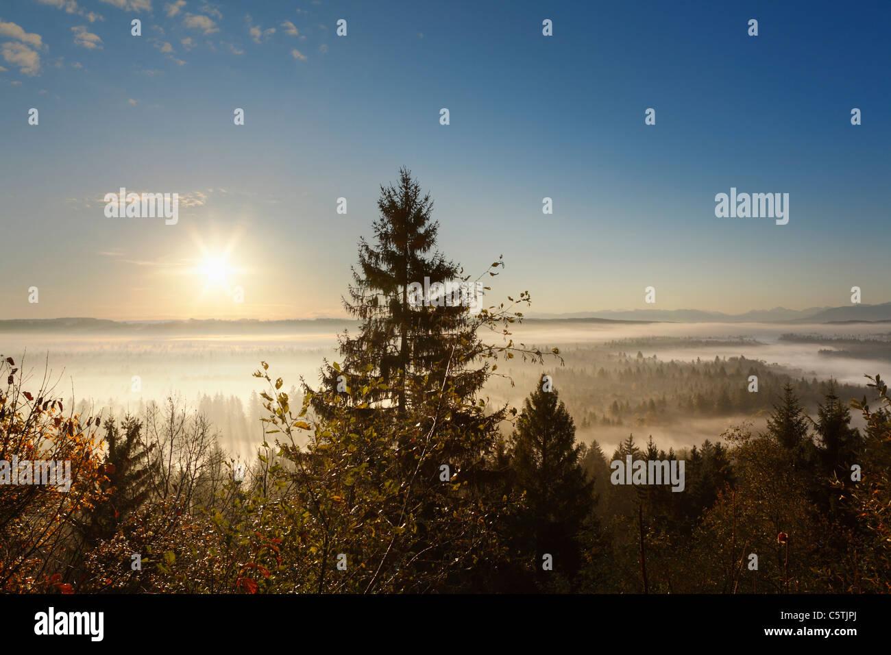 Germany, Bavaria, Upper Bavaria, View of pupplinger au near wolfratshausen - Stock Image