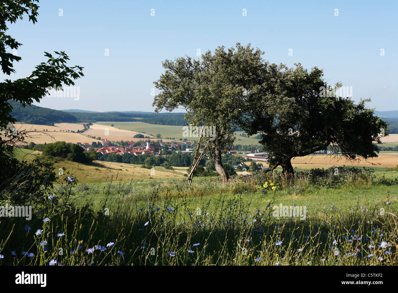 Germany, Thuringia, Rhoen, Rhoenblick, Helmershausen, View of buildings with mountains - Stock Image