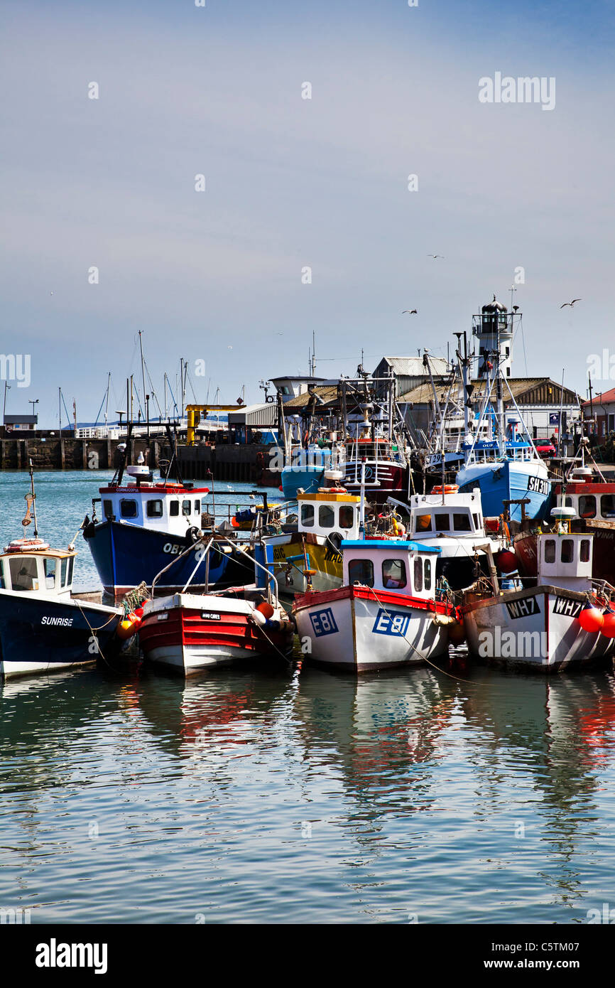 Fishing boats Scarborough Harbour, North Yorkshire - Stock Image