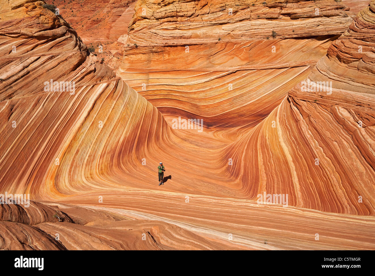 USA, Utah, Coyote Buttes, The wave and single tourist - Stock Image