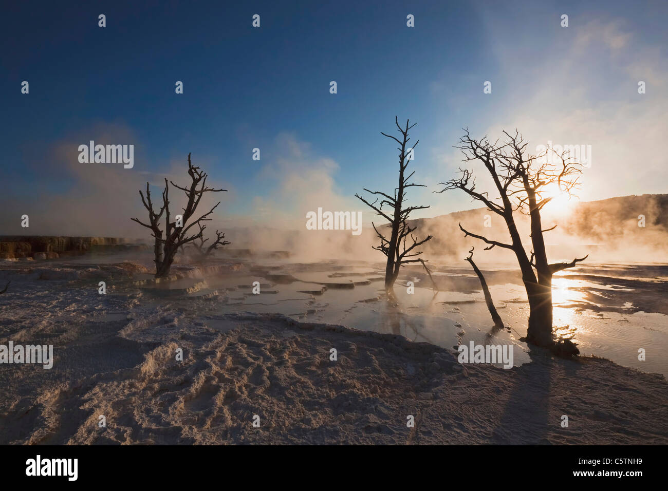 USA, Wyoming, Yellowstone National Park, Mammoth Hot Springs Terrace - Stock Image