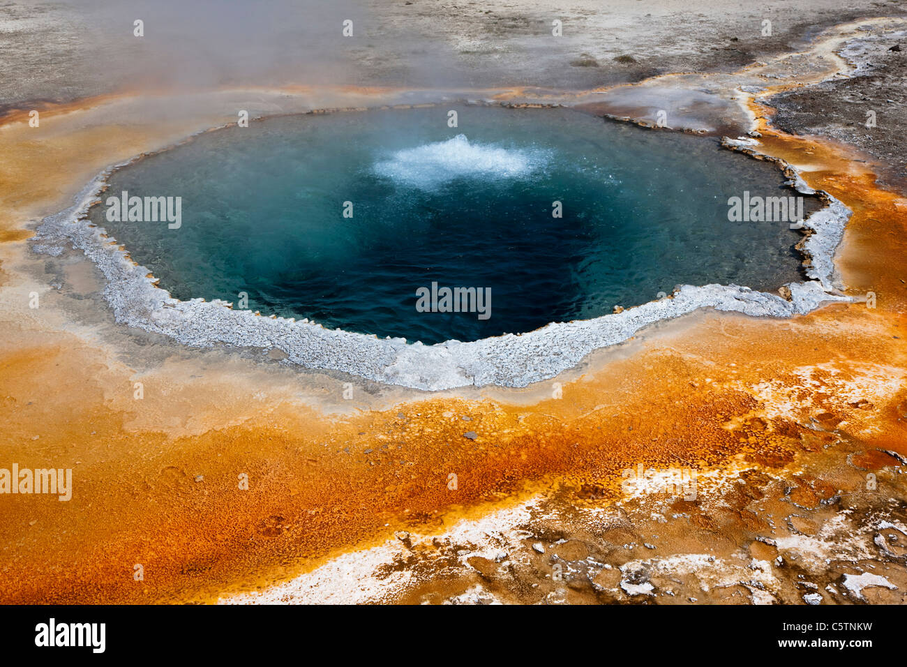 USA, Wyoming, Yellowstone Park, Crested Pool - Stock Image