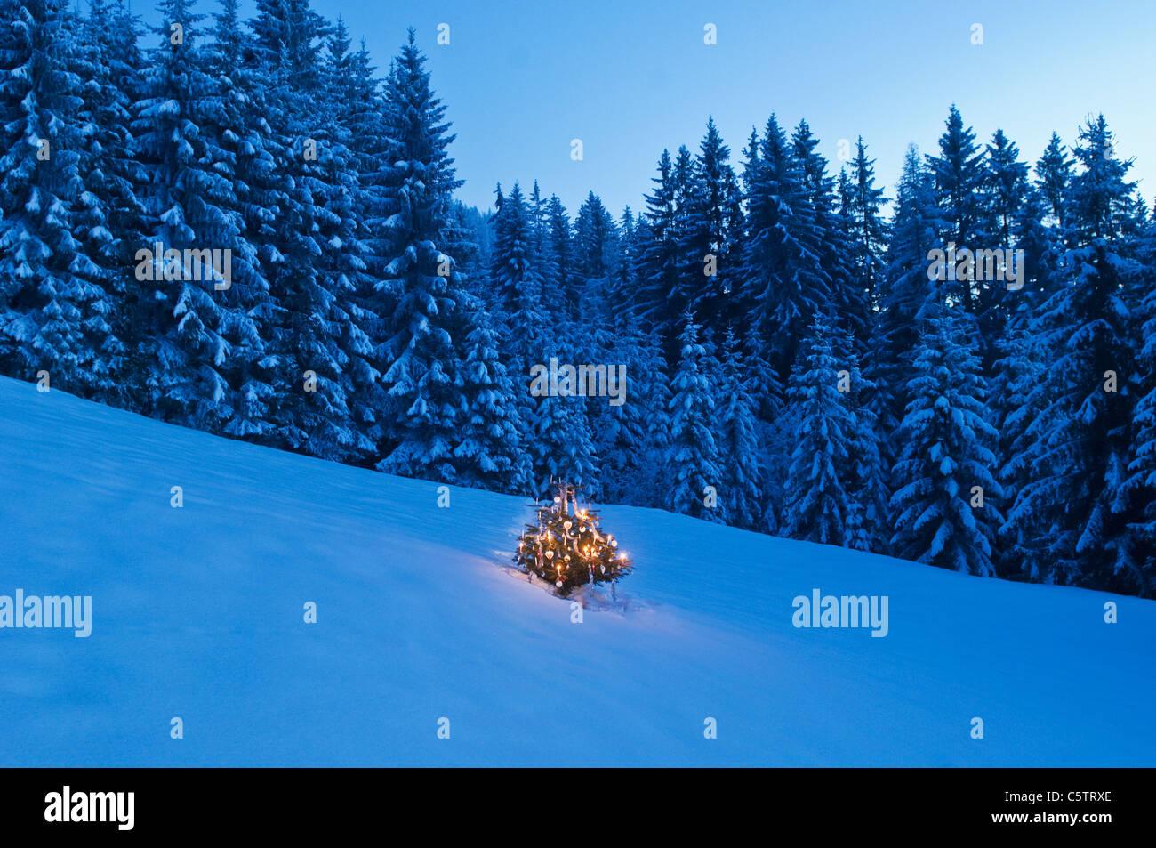 Austria, Salzburg, Altenmarkt-Zauchensee, View of decorated christmas tree in snowy landscape - Stock Image
