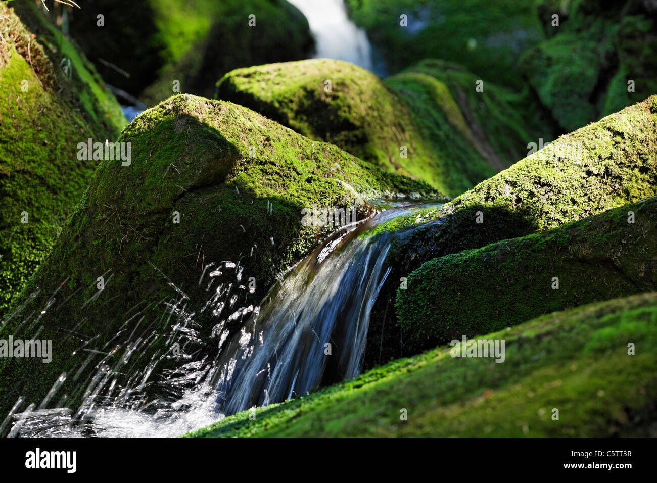 Germany, Lower Bavaria, View of waterfall in bavarian forest - Stock Image