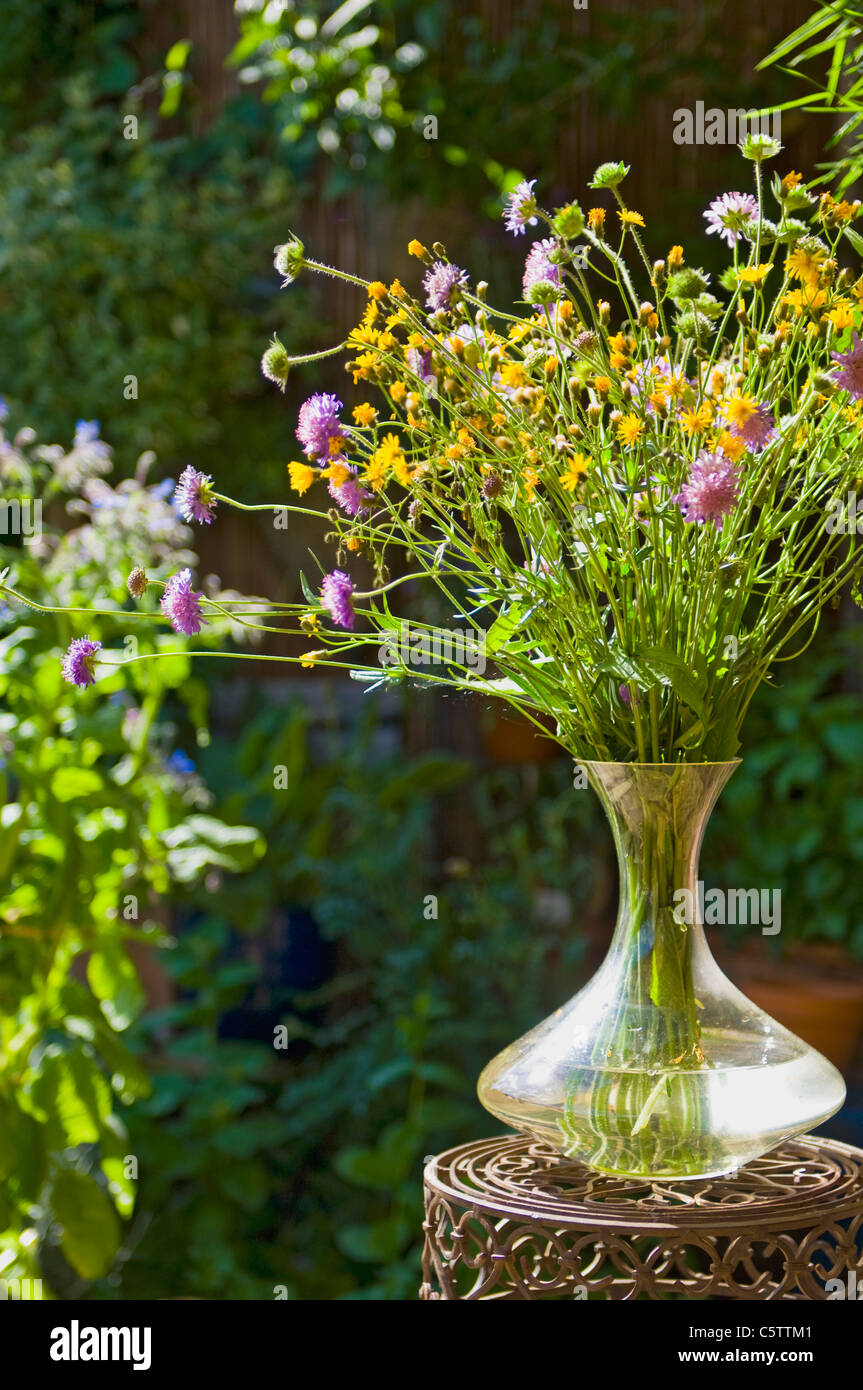 Austria, Salzburger Land, Cut flowers in glass vase on side table, close up - Stock Image