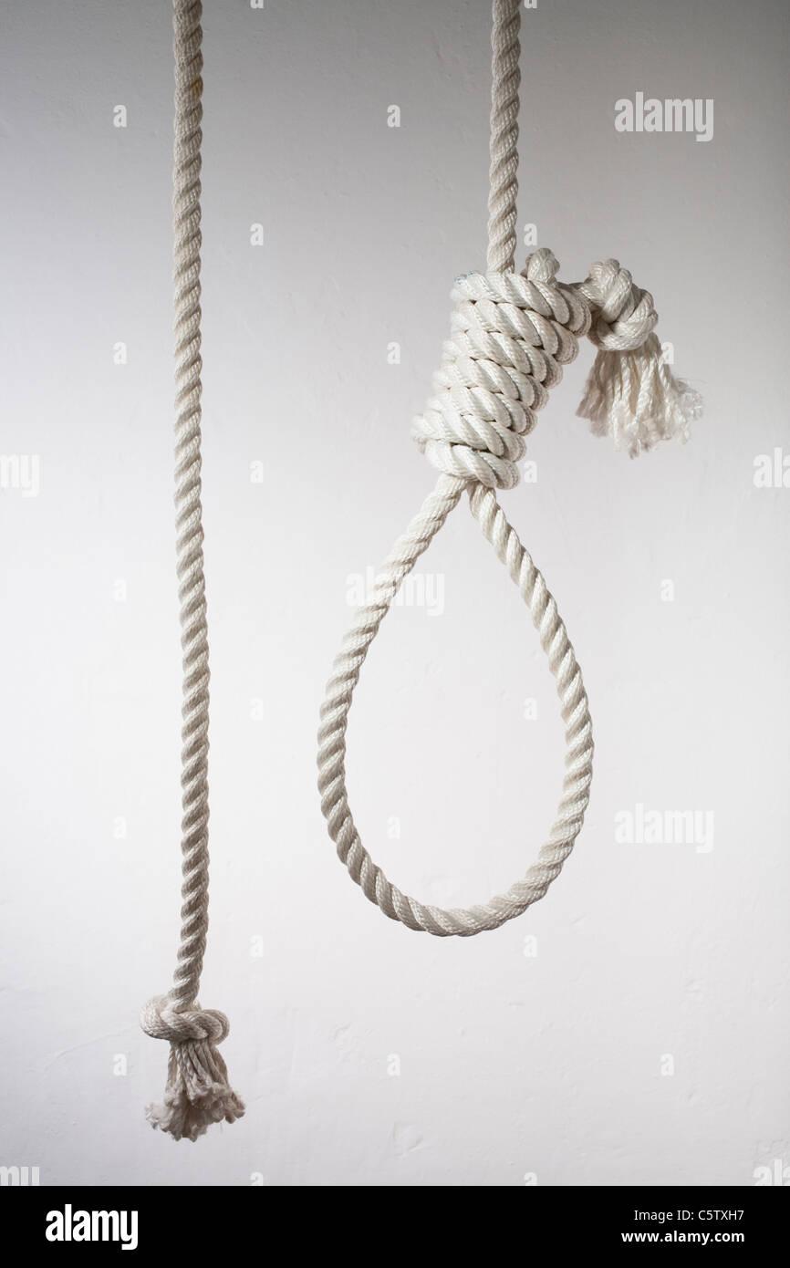 Hangman's noose, close up - Stock Image