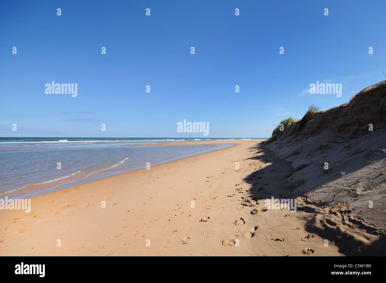 Deserted golden sands and sea on the horizon near Aberdeen in Scotland. - Stock Image