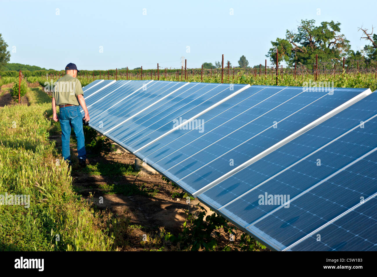 Solar System, technician inspecting panels - Stock Image