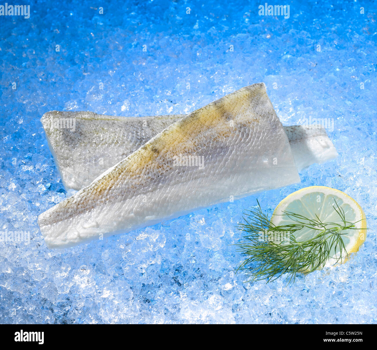 Pike perch on crushed ice, elevated view - Stock Image