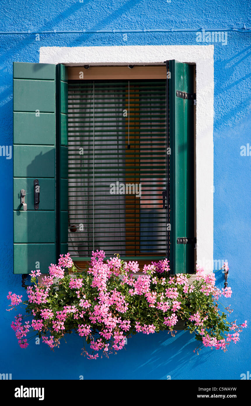 Italy, Venice, Burano, Window, Flower box with geranium flowers - Stock Image