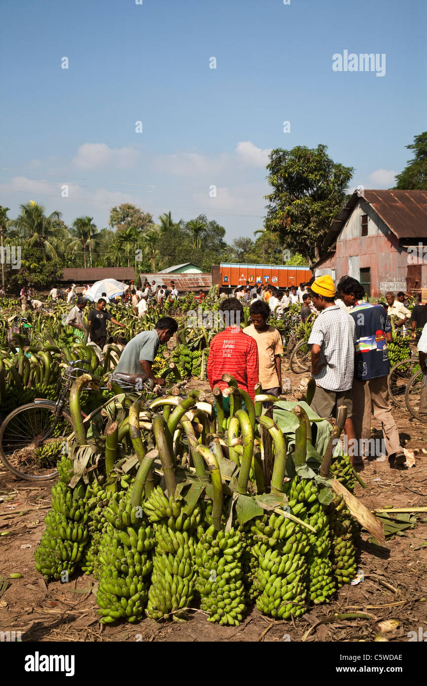 Banana market in one of the villages in Assam, Northeast India. - Stock Image