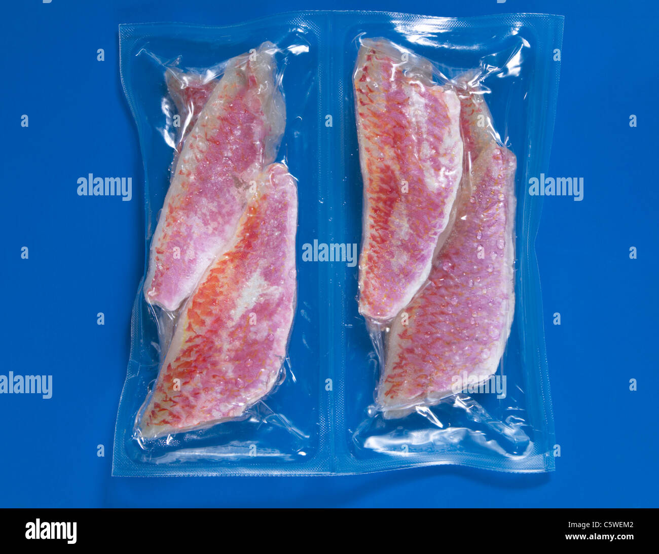 Frozen goatfish vaccuum packed, elevated view - Stock Image