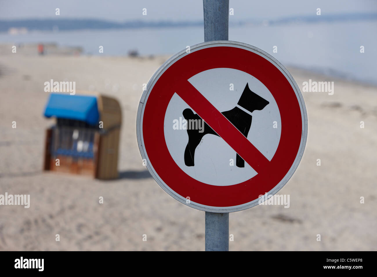 Germany, Baltic sea, Timmendorfer Strand,  Dogs forbidden sign, close-up - Stock Image