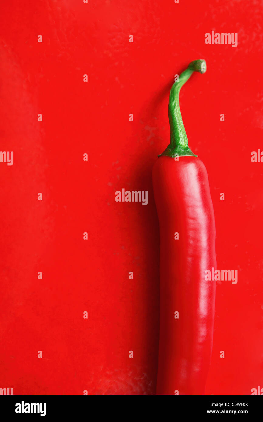 Chili pod on red tile, elevated view - Stock Image
