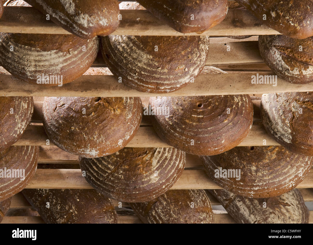 Loaves of bread in rack - Stock Image