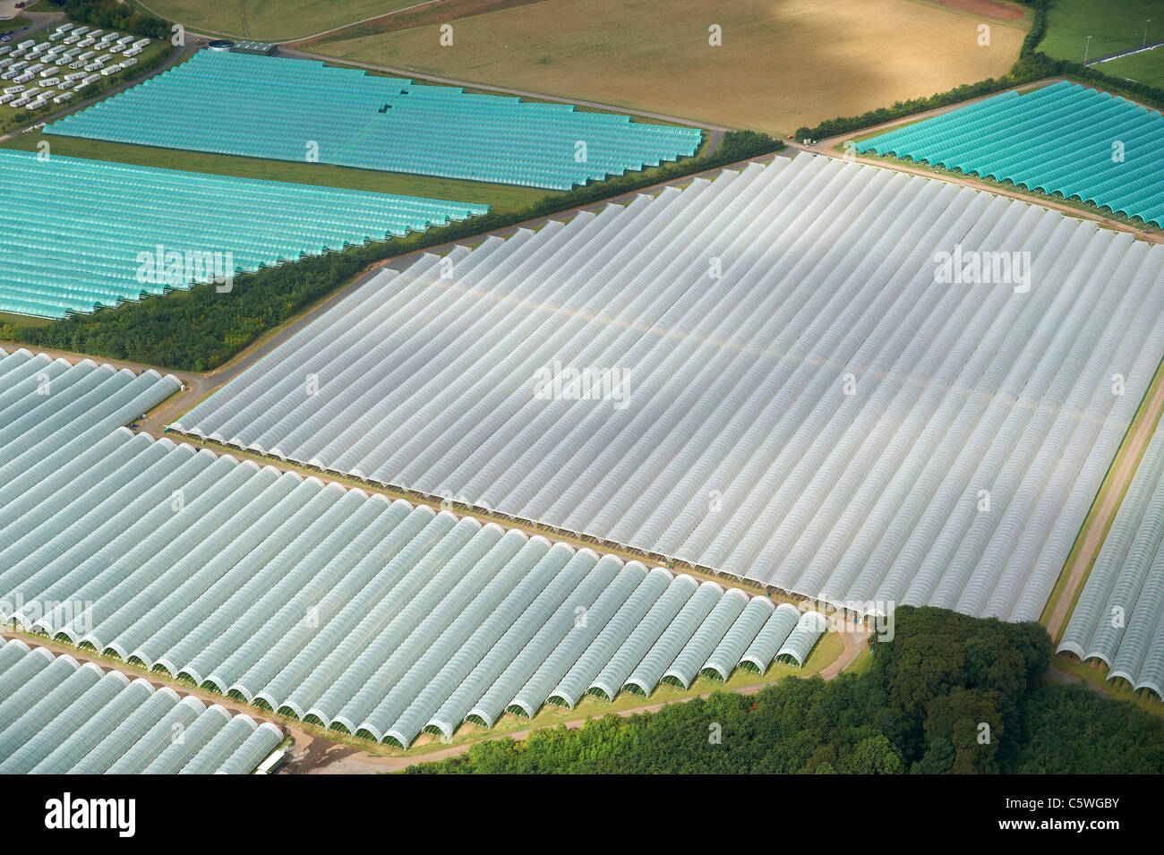Poly Tunnels - growing crops under plastic, Leeds Northern England Stock Photo