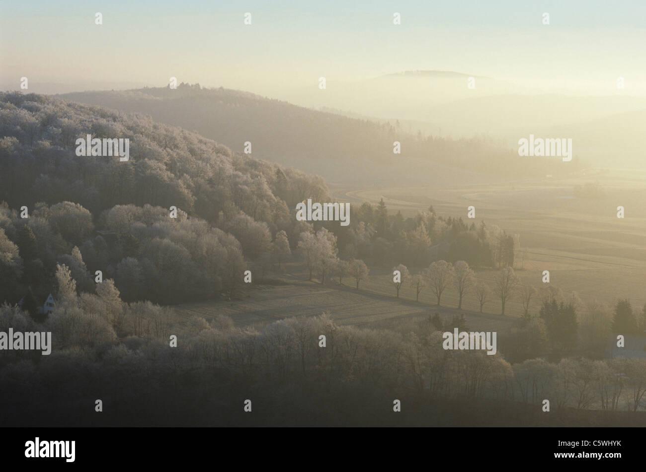 Germany, Schwaebische Alb, winter scenery with fog - Stock Image