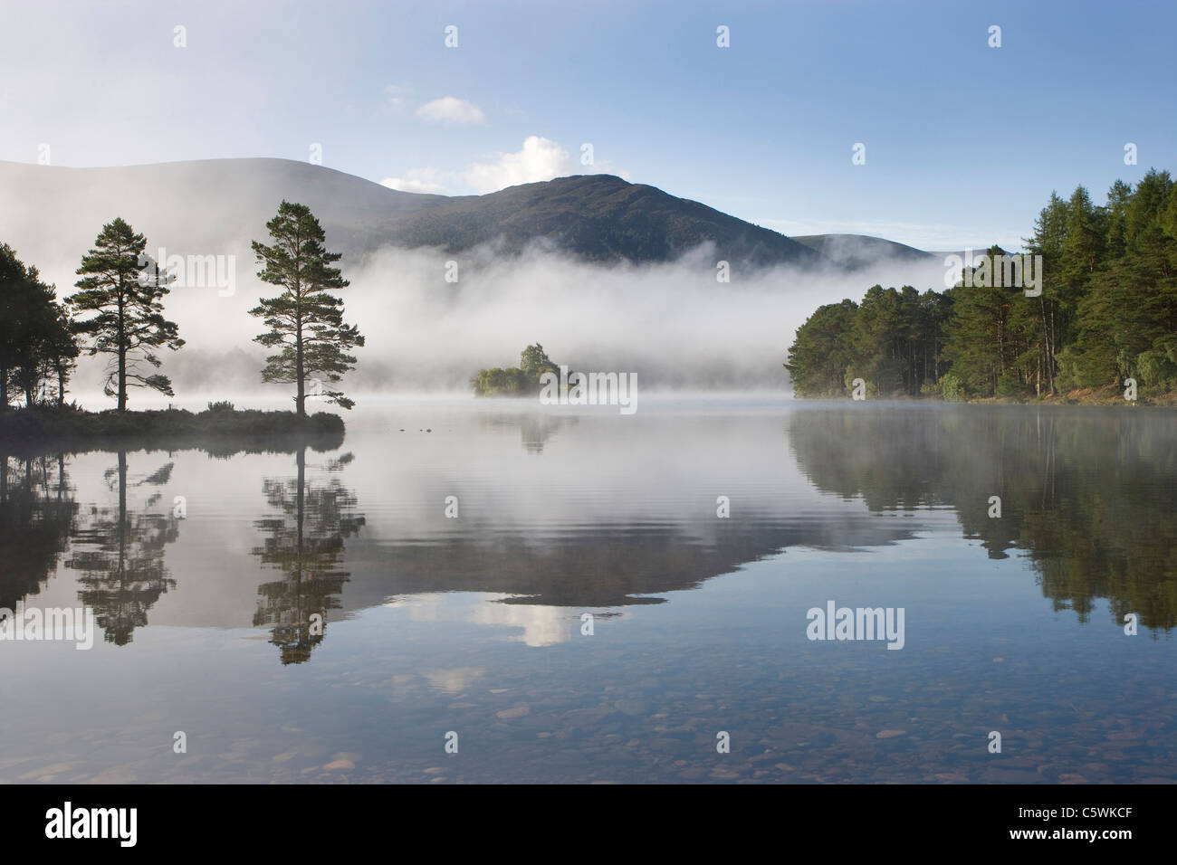 Morning at Loch an Eilien, Rothiemurchus Forest, Cairngorms National Park, Scotland, Great Britain. - Stock Image