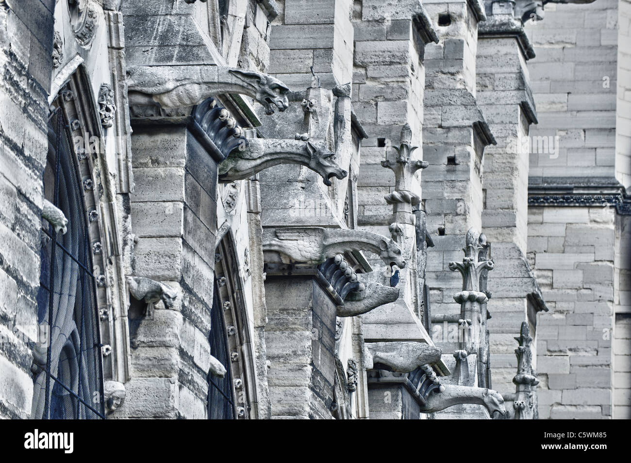Gargoyles of Notre Dame cathedral - HDR image - Stock Image