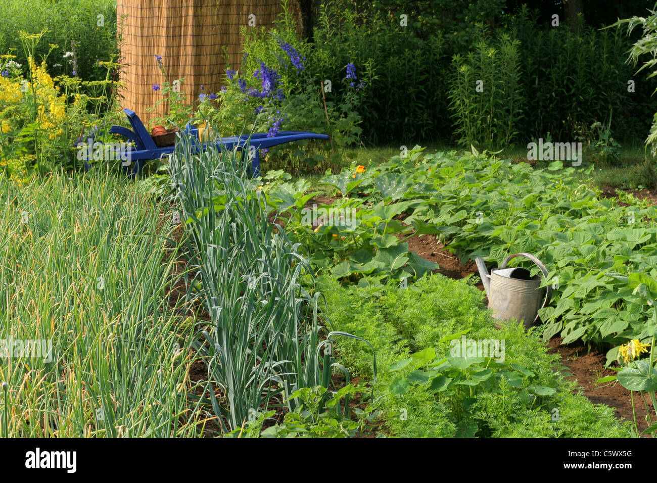 Planches De Legumes Dans Un Jardin Potager Stock Photos Planches