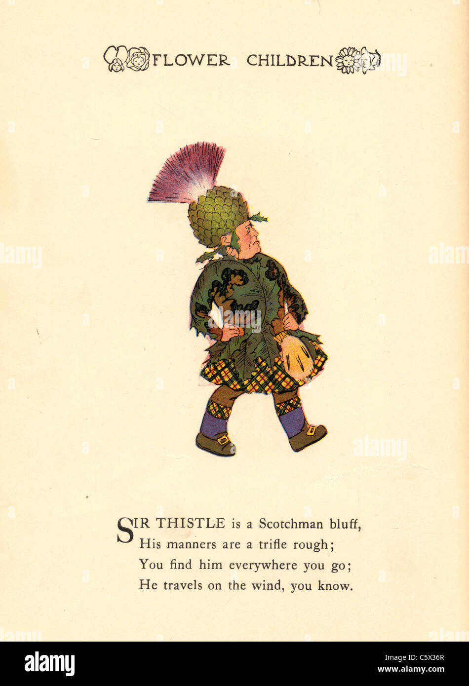 Thistle - Flower Child Illustration from an antiquarian book - Stock Image