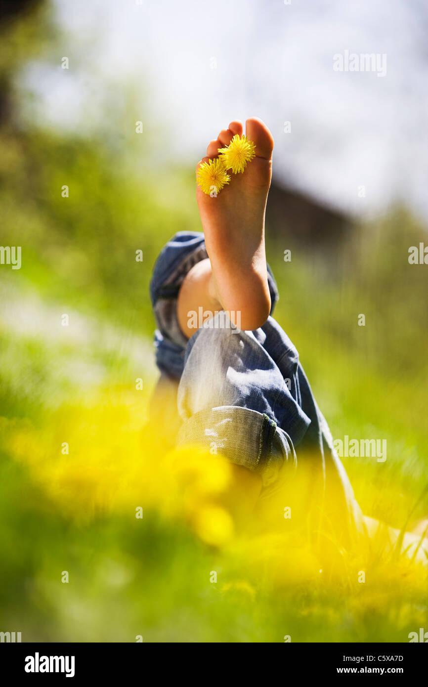 Person relaxing in meadow, dandelion flowers between toes - Stock Image