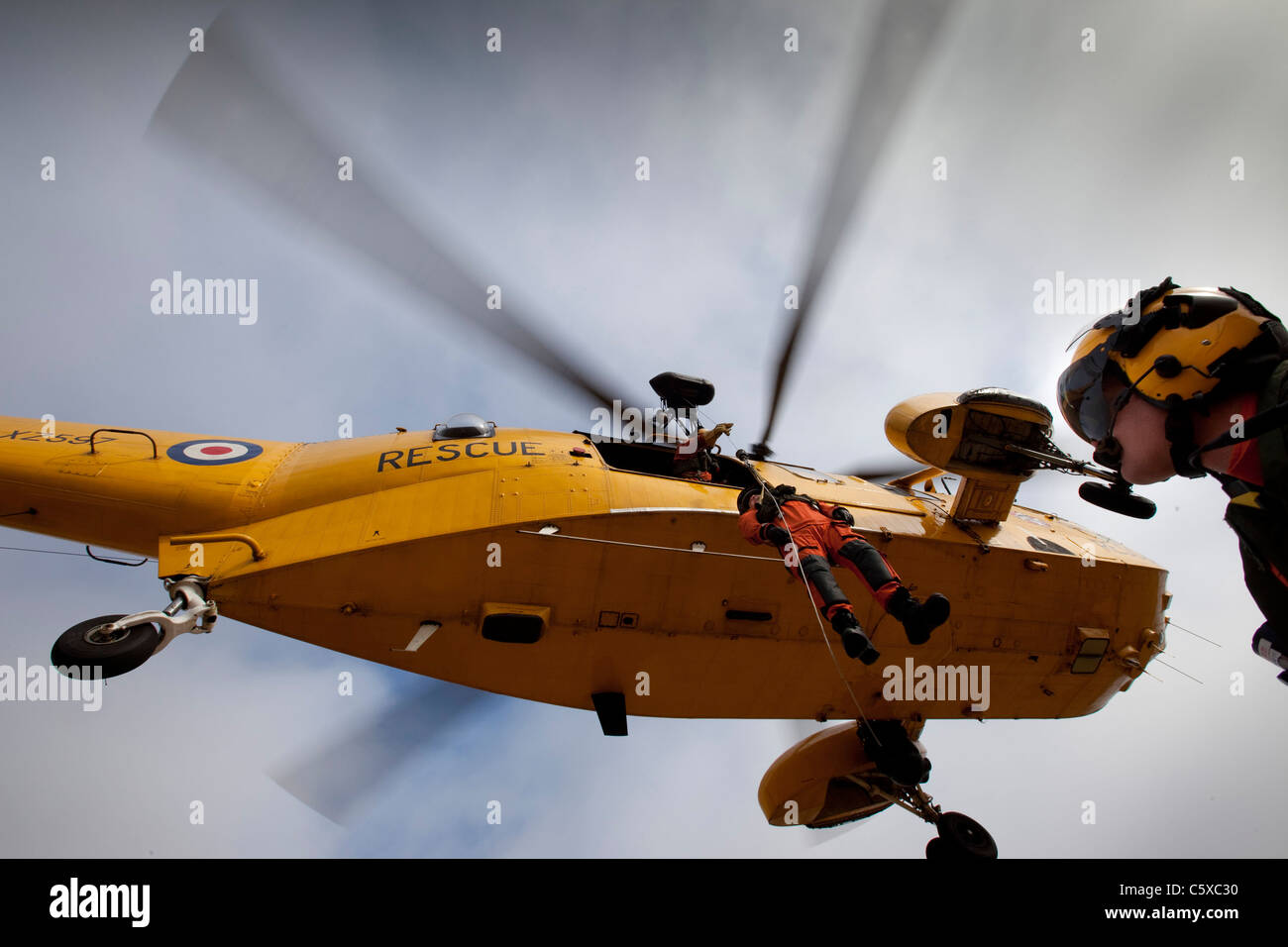 A man is winched up to a hovering Sea King Search and Rescue Helicopter during a SARS training rescue. - Stock Image