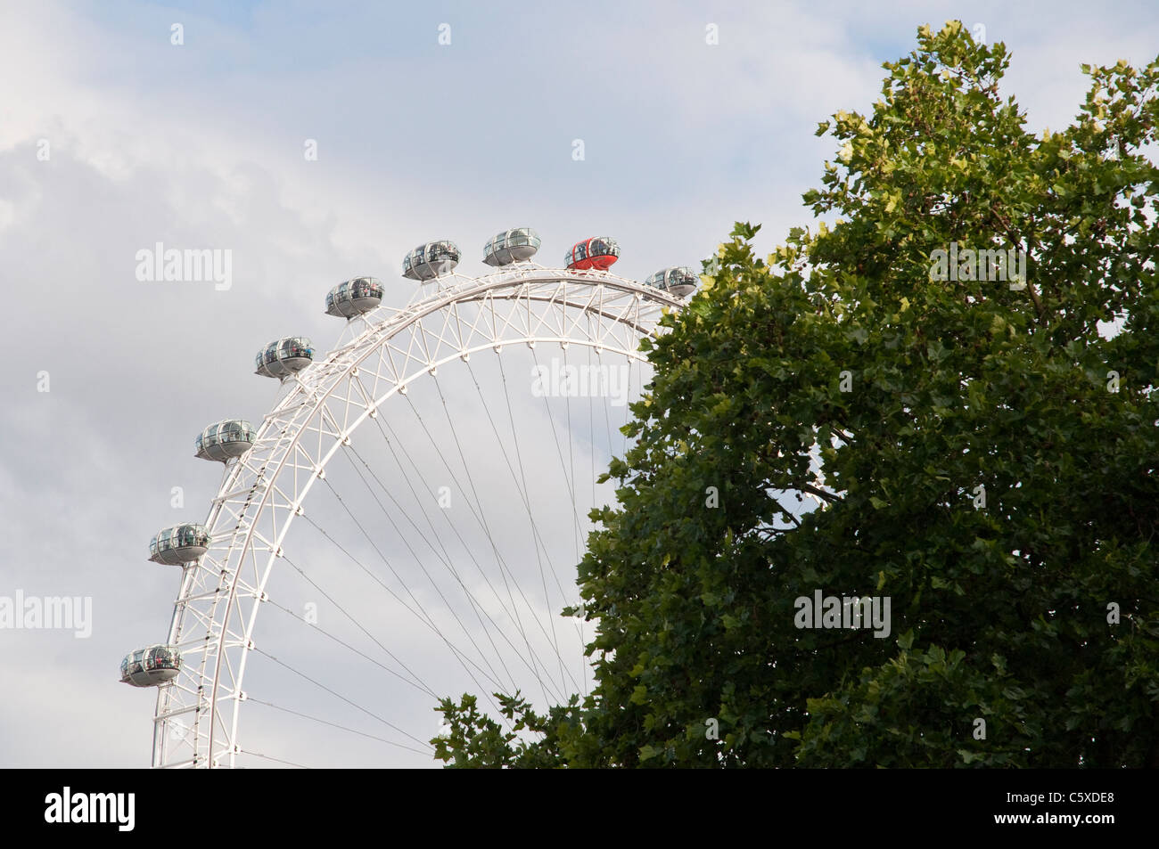 The large ferris wheel known as the 'London Eye' seen behind trees on the South Bank, London, England. - Stock Image