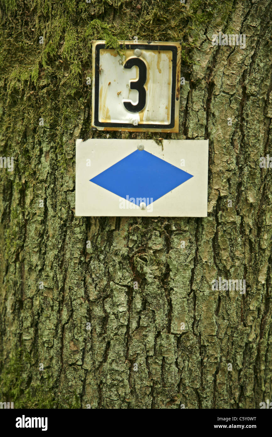 Number three and blue diamond markers fixed to tree to aid navigation on walking route. - Stock Image