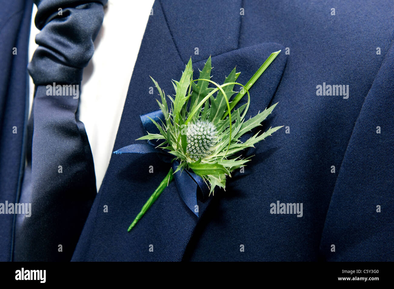 The thistle, national emblem of Scotland, worn as a flower buttonhole on lapel of mans suit jacket - Stock Image