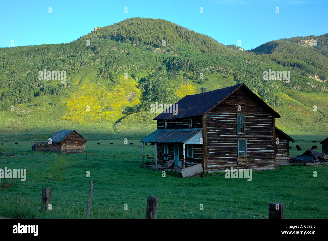 Old weathered farmhouse on Cold Spring Ranch near Crested Butte, Colorado, USA - Stock Image