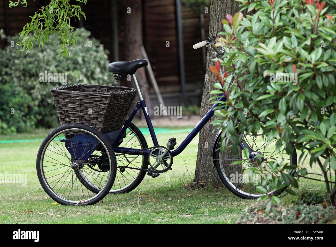 Adults tricycle in garden - Stock Image