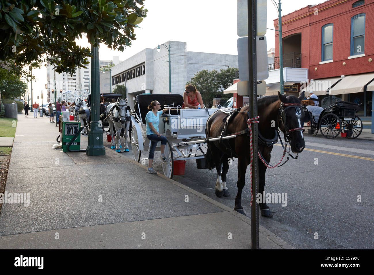 tourist horse and carriages waiting on beale street in downtown memphis tennessee usa - Stock Image
