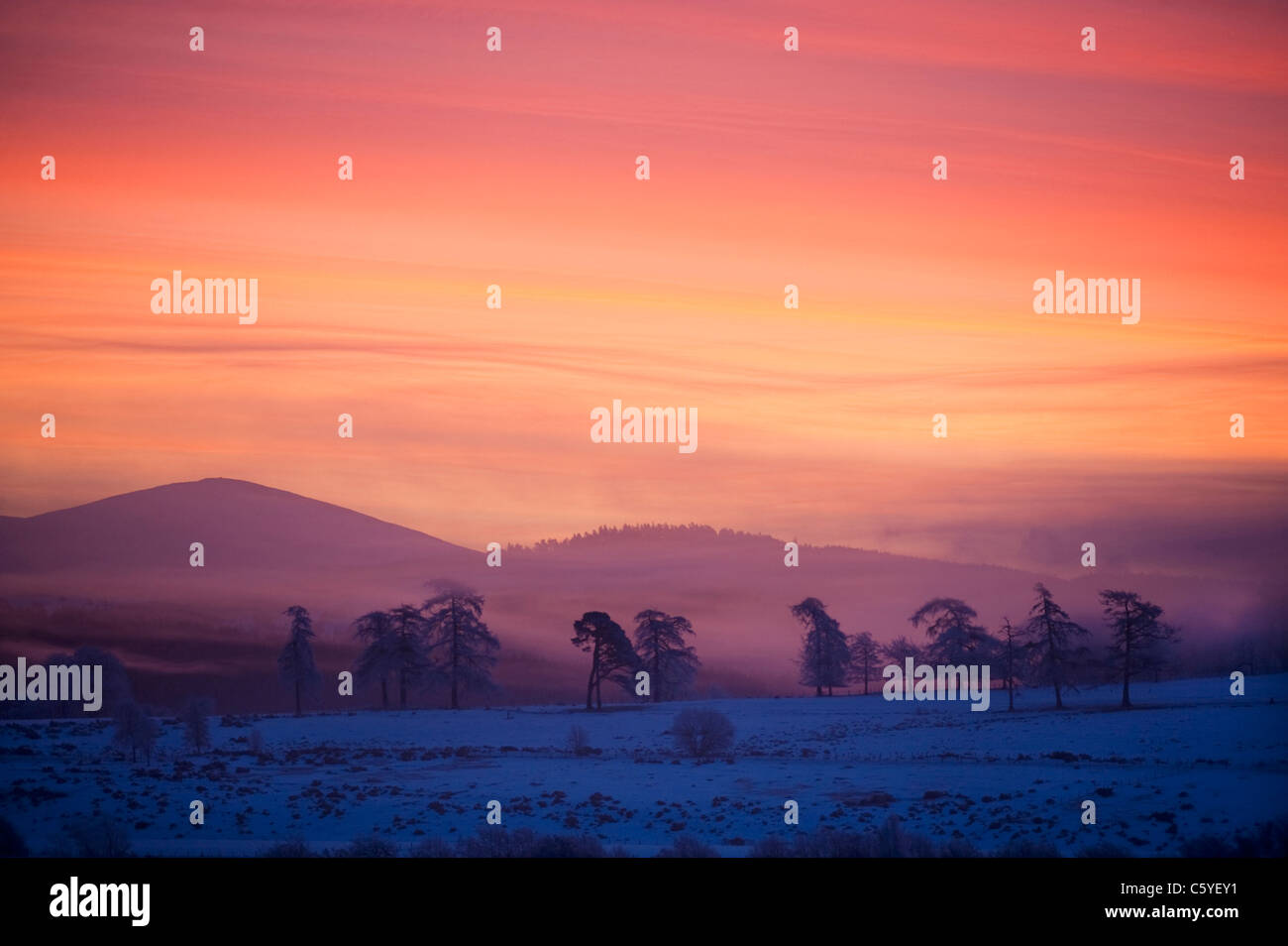 Sunrise over Cromdale hills on winters morning. Cairngorms National Park, Scotland, Great Britain. - Stock Image