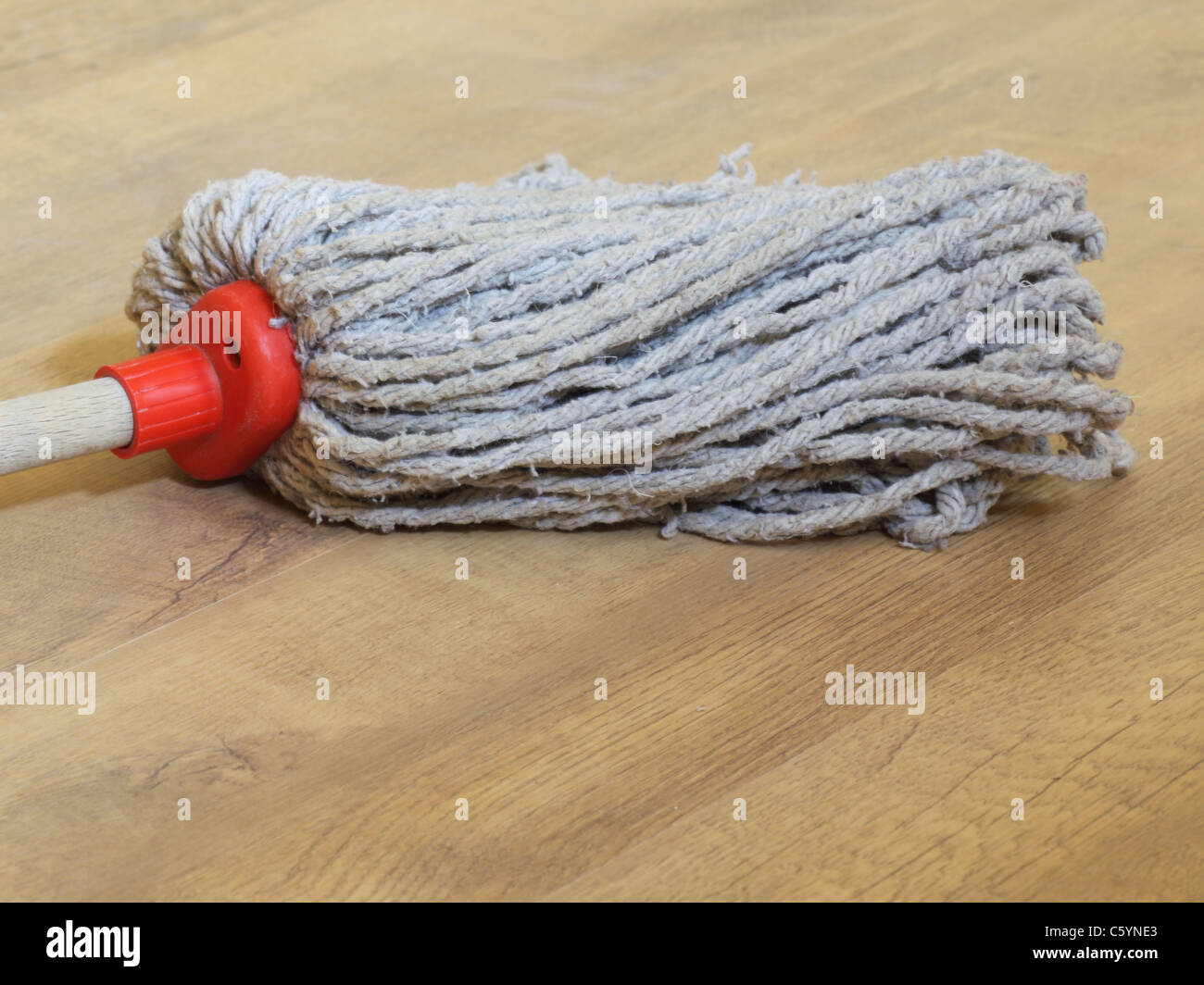 Mop in the room plank flooring - Stock Image