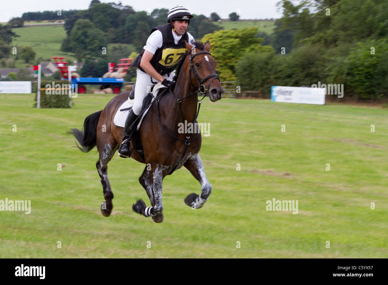 A horse in the suspension phase of the gallop on the cross-country course at the British Festival of Eventing, Gatcombe - Stock Image