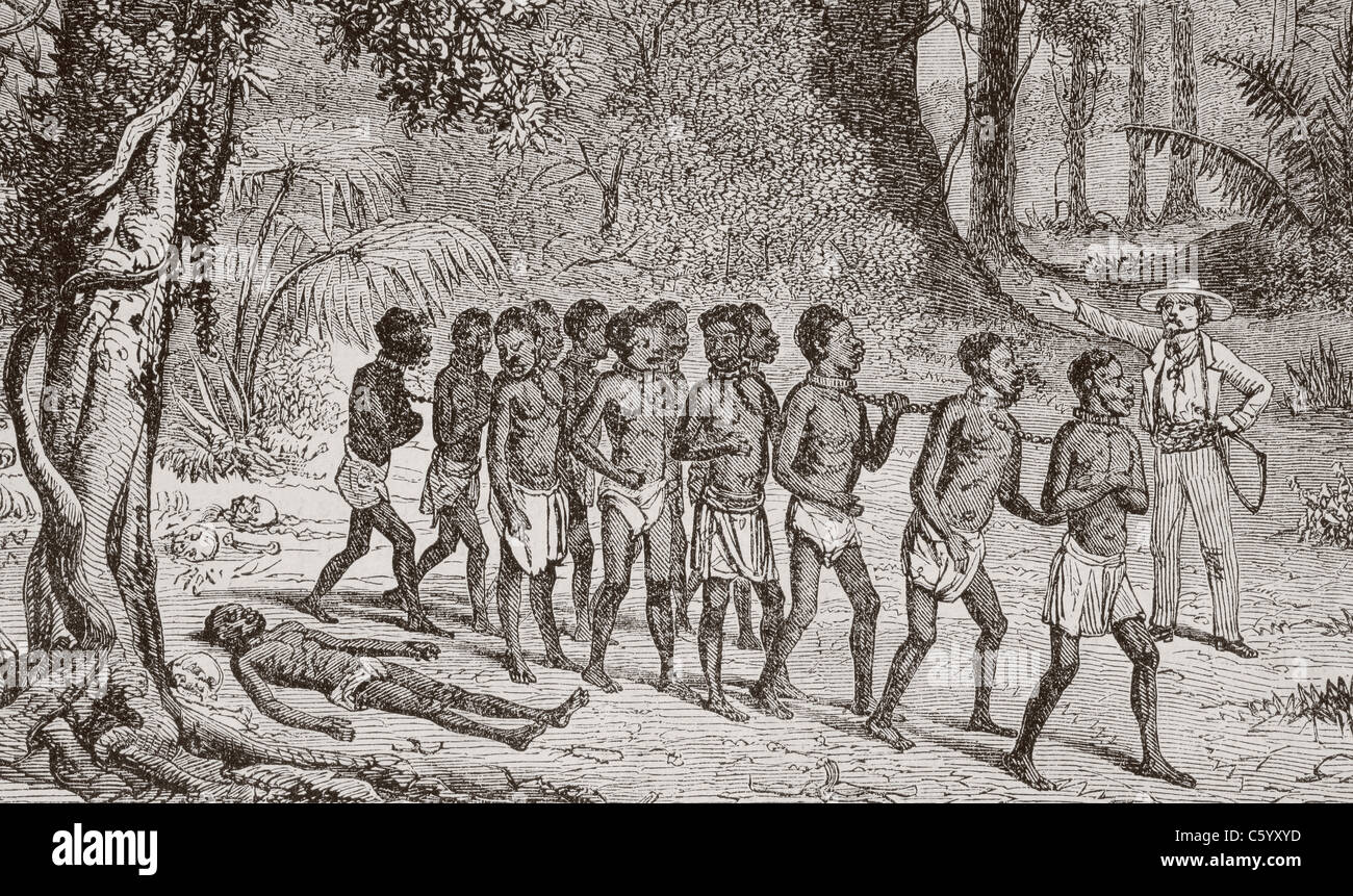 A group of captured Africans being led away by a white slaver. - Stock Image