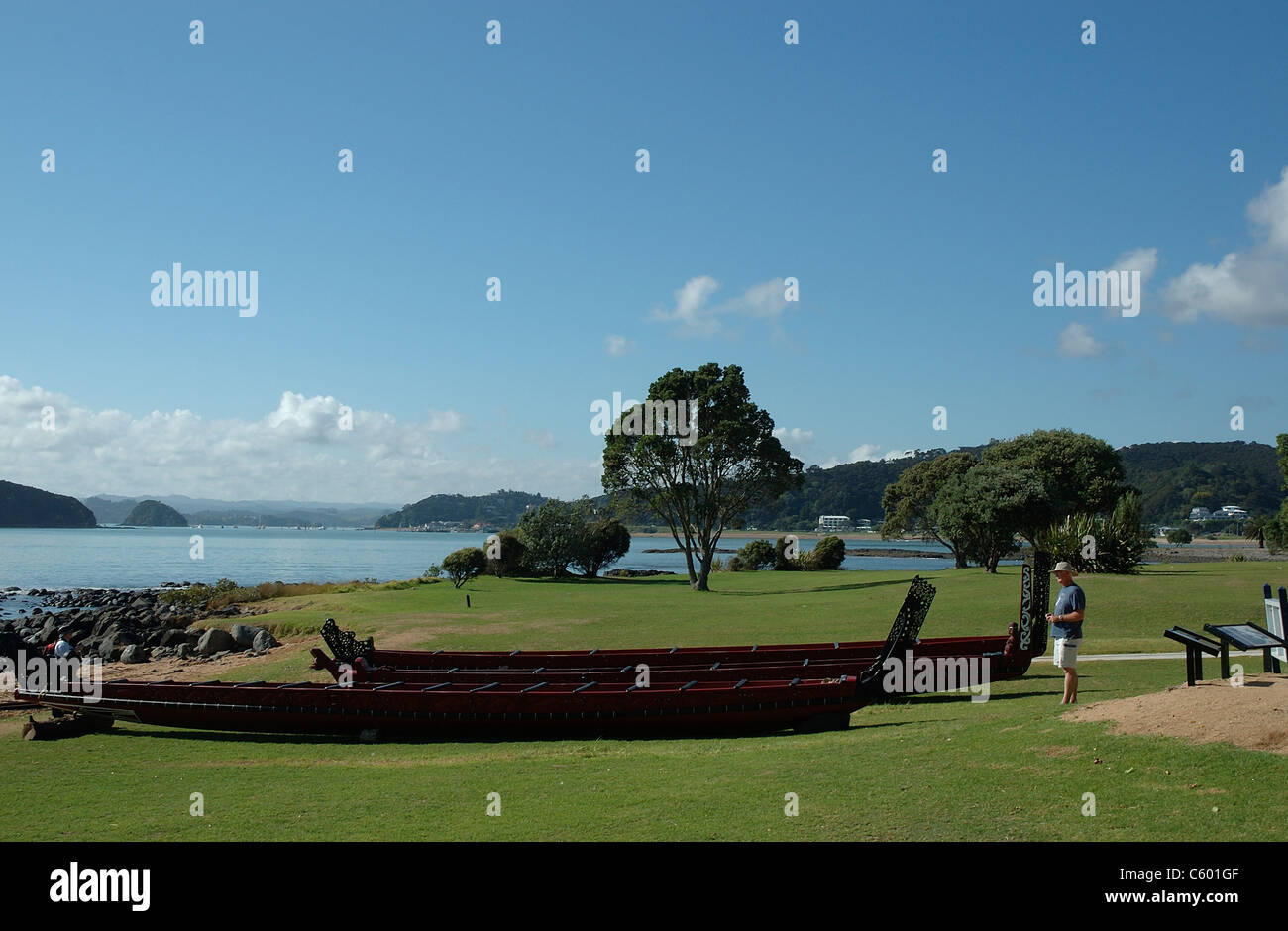 Canoes, Waitangy Treaty Reserve, North Island, New Zealand - Stock Image