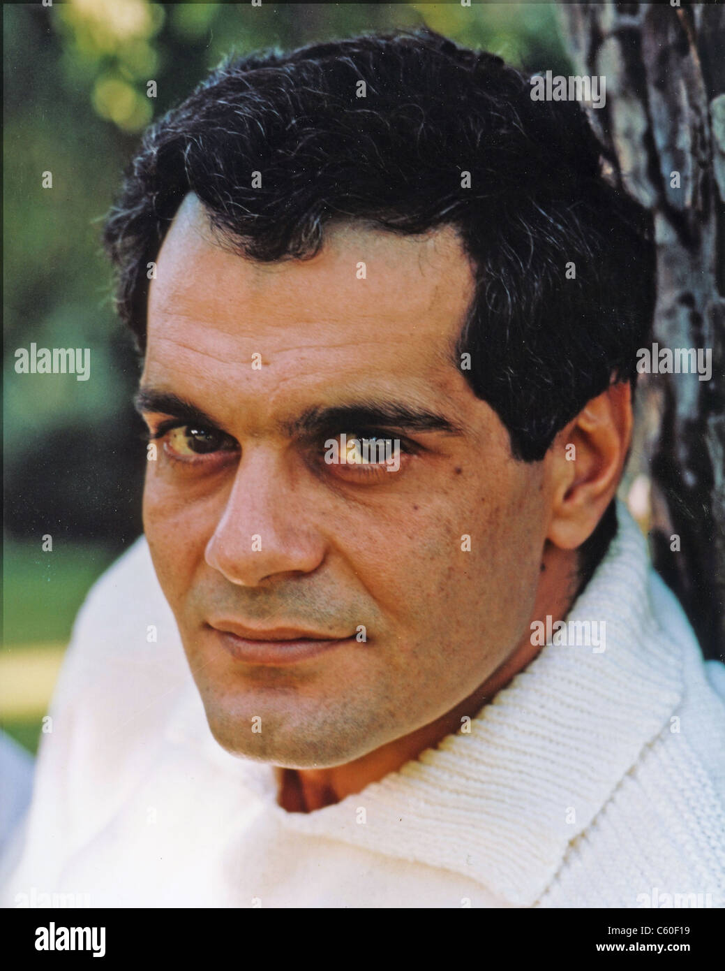 OMAR SHARIF Egyptian film actor about 1960 - Stock Image