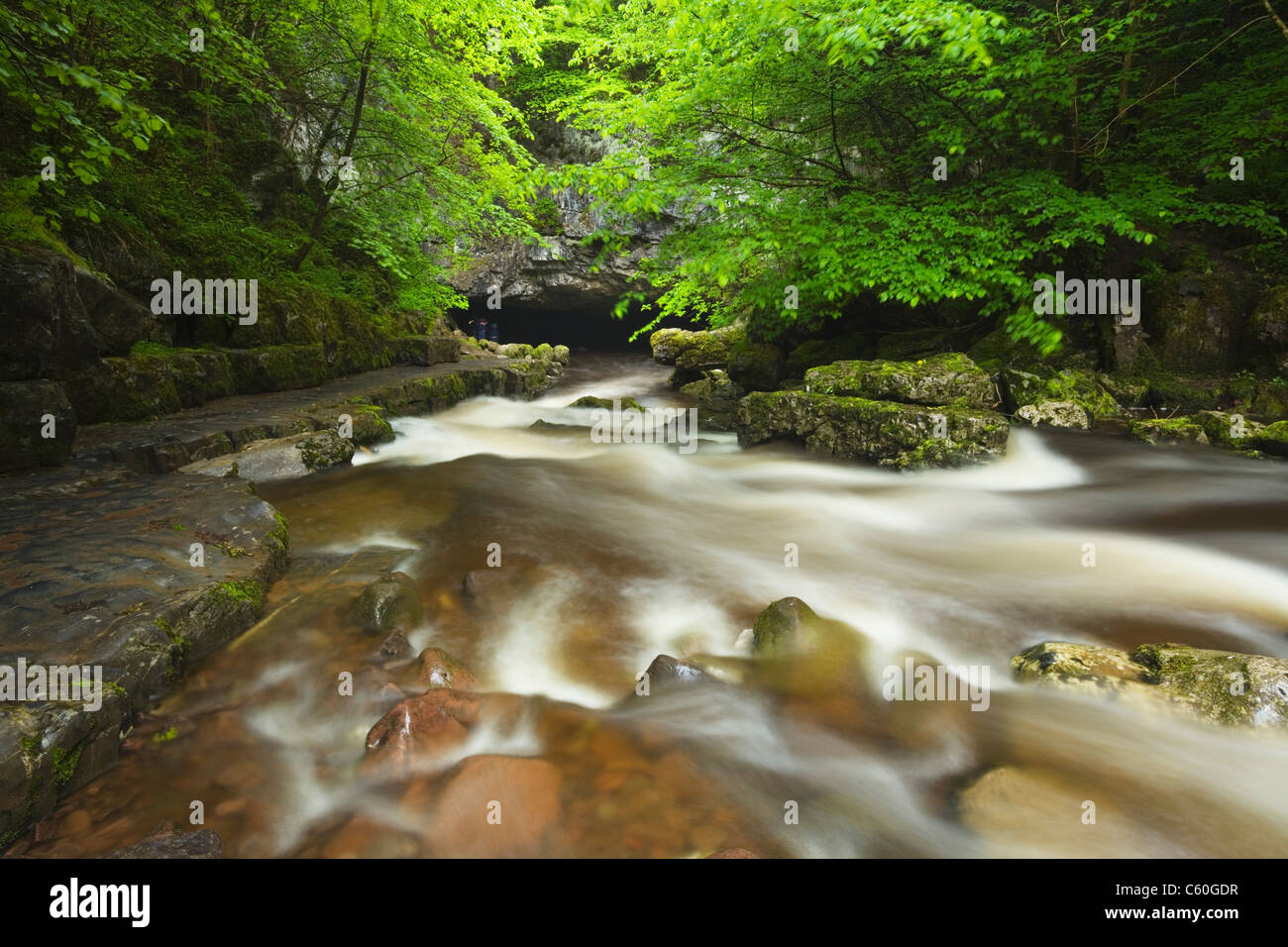 River Mellte flowing into Porth yr Ogof Cave Near Ystradfellte. Brecon Beacons National Park. Powys. Wales. UK. - Stock Image